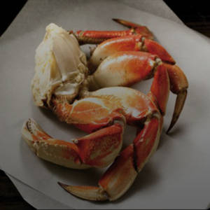 Wild Caught Dungeness Crab